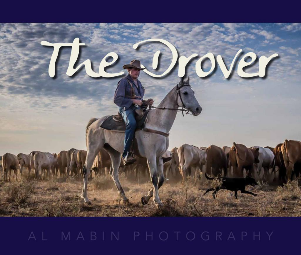Copy of 'The Drover' donated by Bald Blair Angus