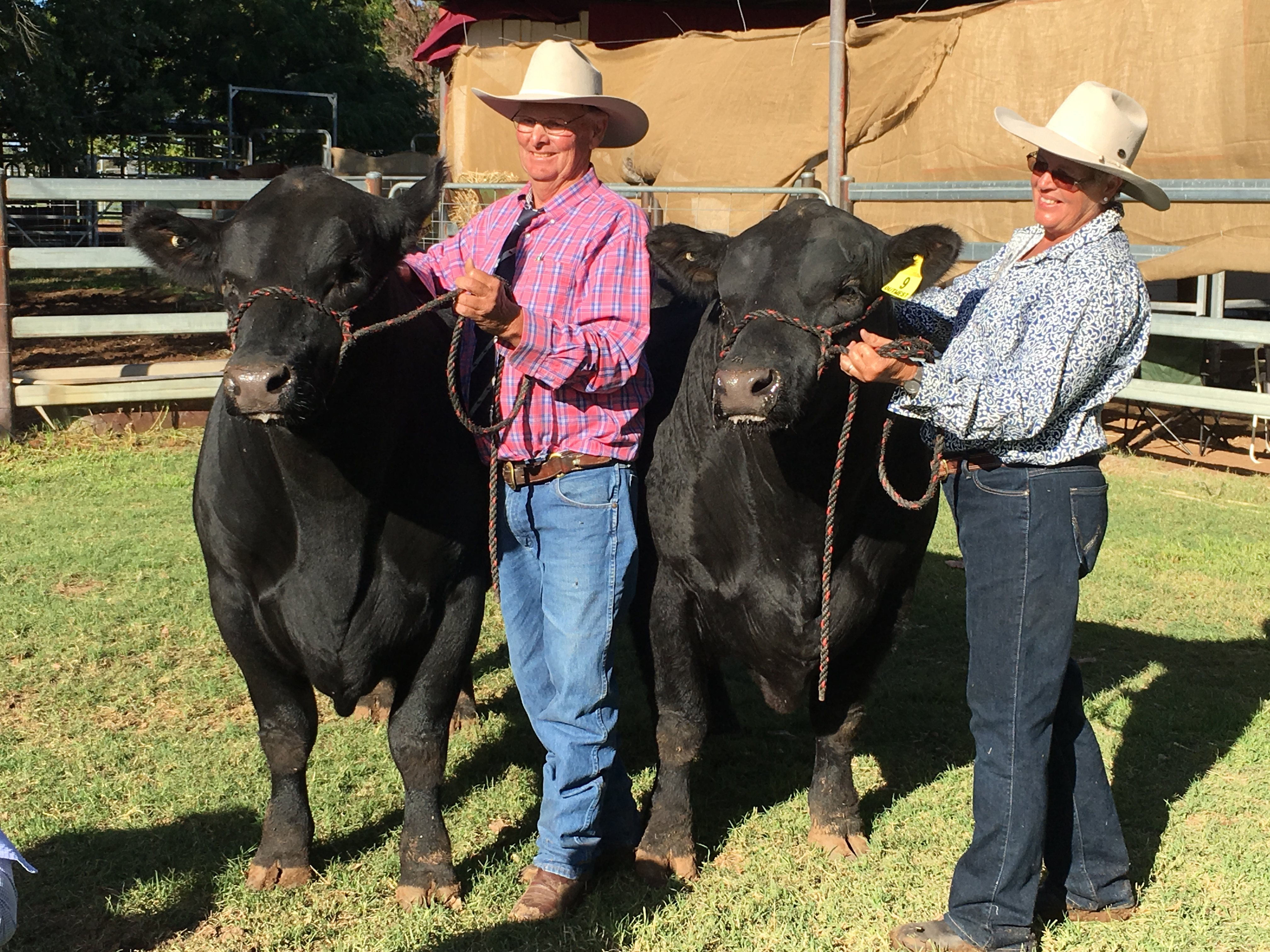 Ewen & Marg McLeish at their 2016 on property bull sale