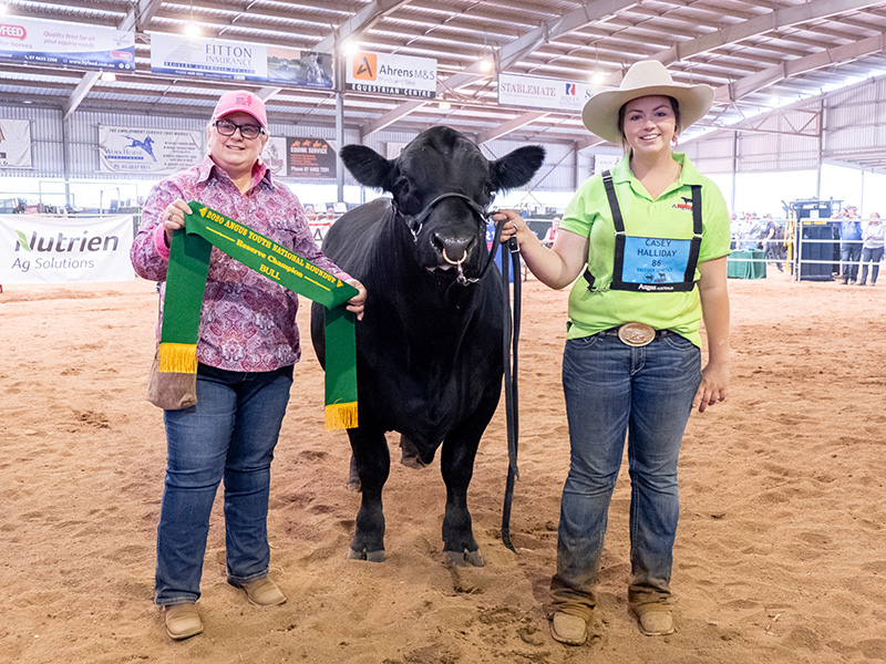 Reserve Champion Bull J & C PARTY BOY P71 exhibited by Casey Halliday