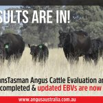 Updated EBVs Available – August 2021