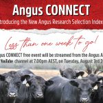 Less Than One Week Until Angus CONNECT
