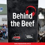 Behind the Beef Episode 11 – The Resurgence of Angus Youth