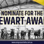 Nominations for the Stewart Award close Friday!