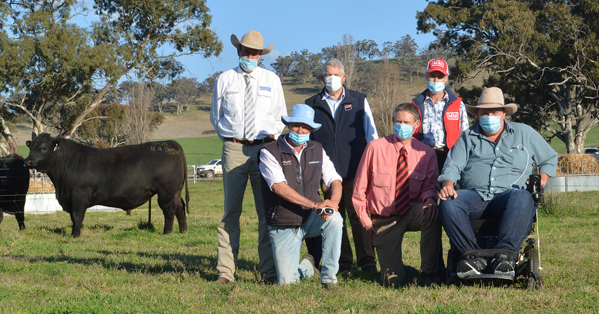 The $240,000 second top-priced bull with Paul Dooley, Tamworth, Millah Murrah's Ross Thompson, Bathurst, Bill Cornell of ABS Australia, Elders agent Andrew Bickford, Bathurst, Millah Murrah's Jane Thompson, Bathurst and Josh Clift of JT Angus, Scone.
