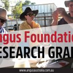 The Angus Foundation Research Grant