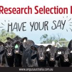 Don't miss out on having your say! Angus Research Selection Indexes